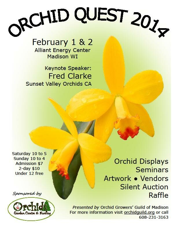 Orchid Quest 2014